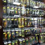 TOMAX - нов риболовен магазин в пловдив - 01010125